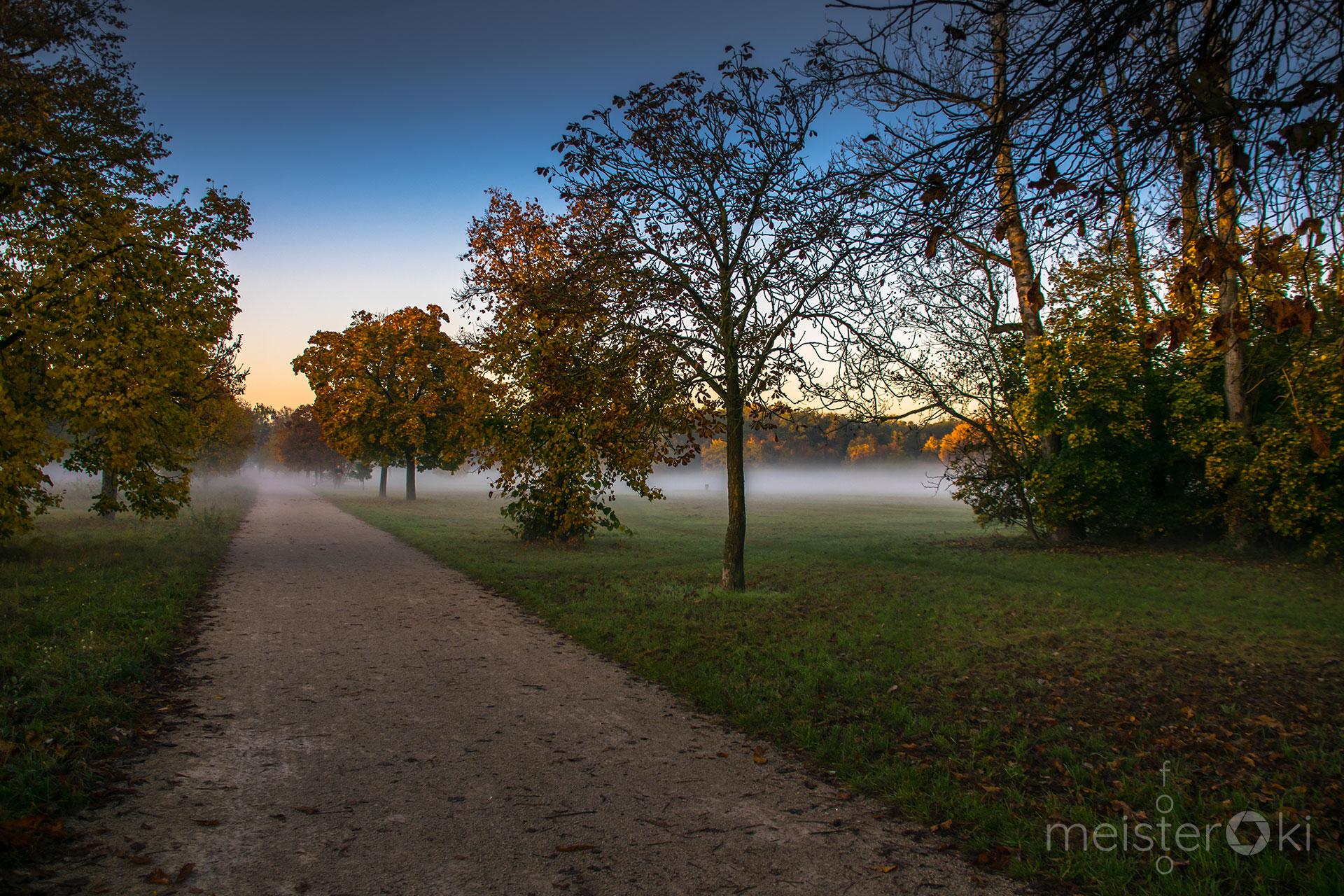 Morgen_im_Park_3